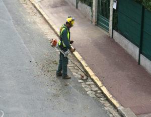 Agent Municipal